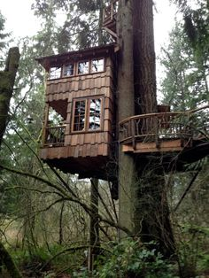 treehouse with great outdoor balcony
