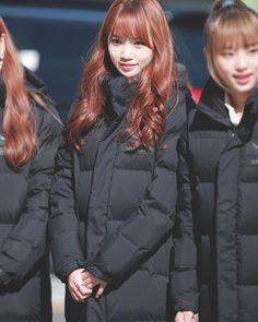 MBC Music Core Mini Fanmeeting ;; she's truly an angel ✊🏻❤️ _ ;; #kimchaewon #김채원 #izone #아이즈원 #produce48 #프로듀스48 #kpop Yuri, Honda, Fandom, The Wiz, Kpop Girls, Girl Group, Winter Jackets, Fairy, Pictures