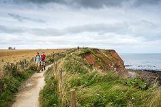 UK, England, Great Britain, North Yorkshire Moors National Park, North Yorkshire, Walking On The Cleveland Way Near Whitby - eStock