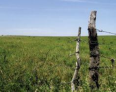 the flint hills in kansas by photographer Jessica Burkart Old Gates, Flint Hills, Break Free, Where The Heart Is, Travel Usa, Kansas, Open Spaces, Fences, Roots