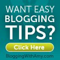 Blogging With Amy - General blogging tips