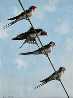 Simon Turvey, Swallows on a wire