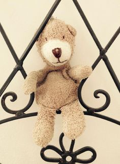 Lost on 17 Jul. 2016 @ Salisbury, Wiltshire. We have lost a much loved teddy. He was taken out of the house on a journey to Waitrose, Salisbury and may have fallen from the car. If found, please get in touch. Visit: https://whiteboomerang.com/lostteddy/msg/zppwg4 (Posted by Melissa on 31 Jul. 2016)