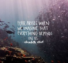 Discover reassuring words from scripture for trusting in God when you feel afraid or doubtful. These Bible verses for trusting God provide wisdom and courage to have faith when we are most vulnerable. Fear Quotes, Bible Verses Quotes, Faith Quotes, Scripture Verses, Scriptures On Fear, Quotes On Prayer, Trust In God Quotes, Wisdom Quotes, Scripture Images