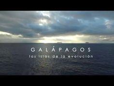 Galápagos: Las Islas de la Evolución