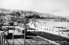 Balmoral Beach tram terminus Historical Images, Live In The Now, North Shore, View Image, Old Photos, Trains, Sydney, Past, Pride
