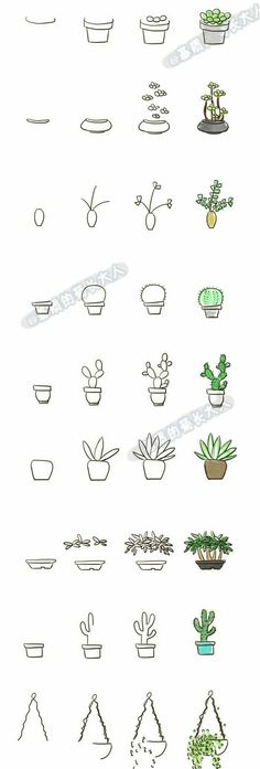 Doodle drawing for your bullet journal, succulents cactus step by step #bulletjournaling #bulletjournal #bujo