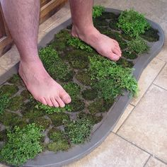 How to Make a Moss Shower Mat  Ok, so don't want a shower mat made of moss, but an interesting way to make a moss mat for the patio.