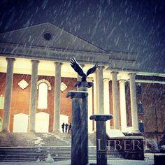 Custom admission essay liberty university