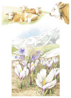 Alpine Spring - Marjolein Bastin