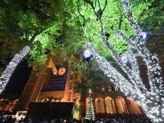 Santuário Nacional de Aparecida inaugura iluminação de Natal (Foto: Thiago Leon/ Santuário Nacional)