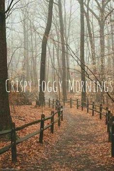 I can't wait ♥️<*me eitherxxx, *=EnRico Roberto fun kkn via 4 nów: + 597 860 860 8 Foggy Morning, Autumn Morning, Early Morning, Autumn Aesthetic, Autumn Cozy, Autumn Feeling, Happy Fall Y'all, All Nature, Hello Autumn