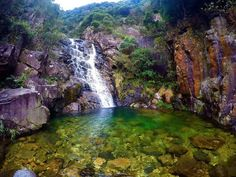 wild hong kong hiking