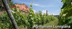 I Migliori Agriturismi in Lunigiana e Dintorni