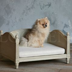 ELOQUENCE Collection - Beds - ELOQUENCE Theodore Dog Bed - Cottage Haven Interiors