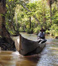 La Reserva de la Biósfera de Río Plátano, Honduras -- Río Plátano Biosphere Reserve,  Honduras