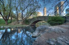 Central Park in New York (can't wait to go in March)