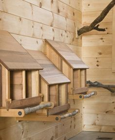 "Keep insects out of the coop. plant basil or mint around the coop, or other plants insects dislike such as marigolds. Line the nesting boxes with these plants also under the bedding. Make the walls inside the coop a ""slippery"" material such as plexigl Walk In Chicken Coop, Chicken Coop Decor, Chicken Barn, Diy Chicken Coop Plans, Chicken Coup, Portable Chicken Coop, Backyard Chicken Coops, Building A Chicken Coop, Chicken Runs"