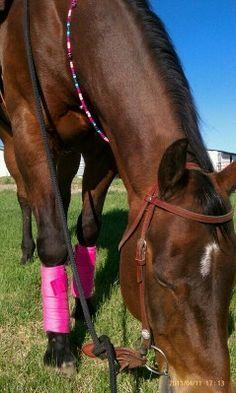 Rhythm-n-Beads natural horsemanship equine rhythm beads bling for horses Western Tack, Natural Horsemanship, Horse Necklace, Beautiful Horses, Suncatchers, Beautiful Creatures, Cry, Bling, Dreams