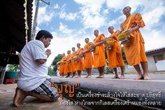monk meditation บวชเข้าพรรษา บวชฟรี วัดธรรมกาย บวชแสน บวชล้าน บวชเณร บวชระยะสั้น concentration 静座 盘坐 禅定 meditative absorption 单盘坐  บุญ..คือมิตรแท้ ....บุญคืออะไรอยู่ที่ไหน...บุญ ค...