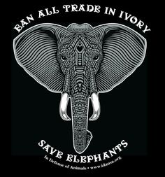 Stop ivory trade
