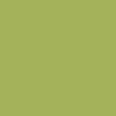 ColorWorks Premium Solids - Kiwi