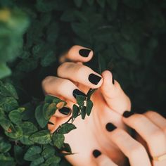 Green wood / black nails / hands /