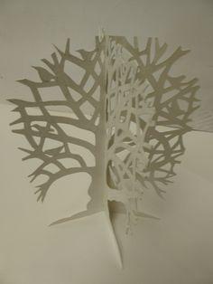 CD Tree Spring Book
