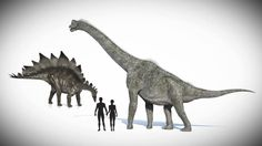 Dinosaurs and Humans: Did humans and dinosaurs co-exist? Are dinosaurs in the Bible? See what lab tests show about the actual age of dinosaur bones.