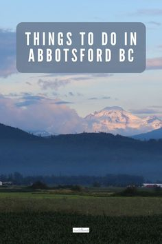 From tiptoeing through tulip fields to birding and feasting on unicorn cakes and farm to table cuisine, we're sharing fun and surprising things to do in Abbotsford BC. Columbia Travel, Canada Travel, British Columbia, Abbotsford Bc, Stuff To Do, Things To Do, Unicorn Cakes, Tulip Fields, Best Family Vacations