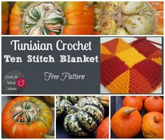 The ultimate stash-buster: Tunisian Crochet Ten Stitch Blanket. Make this blanket yourself using my free pattern. Credit to Frankie Brown for the design.