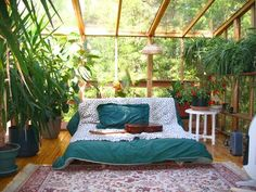 Sunroom green and teal