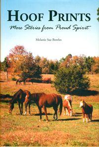 The Proud Spirit Books/Melanie Sue Bowles/Author/Proud Spirit Books