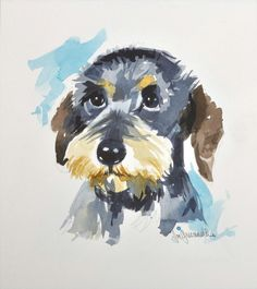 Wire-Haired Dachshund by Joe Greenwald Arte Dachshund, Wire Haired Dachshund, Dachshund Love, Raza Schnauzer, Schnauzer Art, Puppy Images, Dog Paintings, Dog Art, Beautiful Dogs