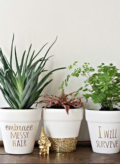 40 Brilliantly Gold DIY Projects - Gold DIY Projects and Crafts – Gold Foil Lettering On Flower Pots – Easy Room Decor, Wall Art a - Easy Home Decor, Cheap Home Decor, Diy Ouro, Ideias Diy, Gold Diy, Painted Pots, Terracotta Pots, Indoor Plants, Potted Plants