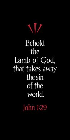 Behold, the Lamb of God who takes away the sins of the world. - John 1:29