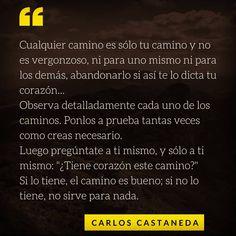 28 Mejores Imágenes De El Nagual Carlos Castaneda Frases
