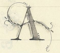 .✍ Sensual Calligraphy Scripts ✍ initials, typography styles and calligraphic…