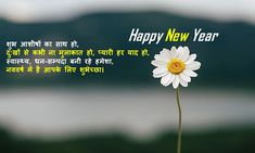 2000+ Happy New Year Wishes, Messages, Quotes, Poem, Slogan, HD Images, Status, Shayari {Latest Updated 2021} New Year Wishes Quotes, Happy New Year Wishes, Quotes About New Year, Happy New Year Status, Happy New Year 2020, Wish Quotes, Status Quotes, Hd Images, Slogan