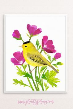 Wilson's Warbler bird, and Winecup wildflowers. Watercolour + gouache painting | Instant download, printable wall art by PRINTSPIRING