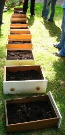 Container gardening... cute idea & easier than buying boards yourself and putting them together, could even add legs or set on tables.