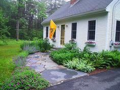 Hilltown Tree and Garden » Portfolio Goshen Flagstone Front Walkway with Ornamental Perennials