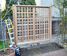 build a garden trellis for climbing rose