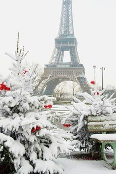 ♔audreylovesparis — Paris en hiver