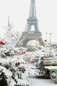Paris no inverno.