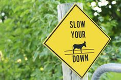 A Ruffled Life | Slow Your Donkey down. I need one of these signs.