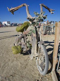 A tree bike!