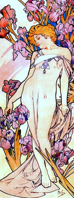 Flowers - Iris