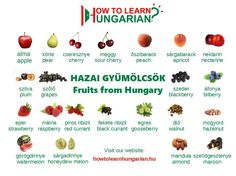 Hungarian vocabulary for beginners: the fruits Croatian Recipes, Hungarian Recipes, Hungarian Flag, Plum Fruit, English For Beginners, Apple Pear, Exotic Fruit, German Language, Health Desserts