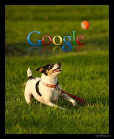 This week Google announced a very useful update for their Fetch As Google tool. Basically, the Fetch As Google Tool lets you see a page as Google see it. This can be incredibly useful when troubleshooting a web page's poor performance and poor search rankings. Read more at http://veepopat.ca/fetch-as-google-tool/  #SEO #website #development #strategy #SEM #search #engine #optimization #webmaster #tools #content #social #media